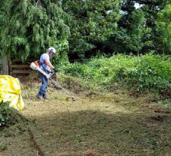 Serviço de jardinagem em clínicas na cidade de Itaquaquecetuba/SP