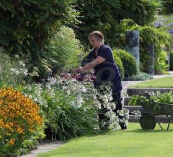 Serviço de jardinagem em empresas na cidade de Barueri/SP