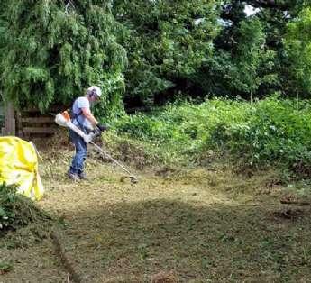 Foto: Serviço de jardinagem em instituições de ensino na cidade de São Bernardo do Campo/SP