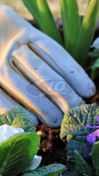 Foto: Serviços de jardinagem terceirizada